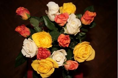 Вот они красавицы розы!